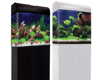 620T AquaStyle 130L Tall Curved Glass Aquarium