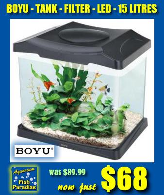 BOYU 15L Aquarium
