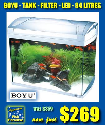 BOYU 84L Aquarium