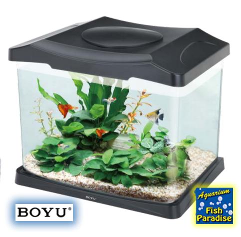 BOYU DSN-315 Aquarium