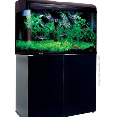 Aqua One 850 Aquarium