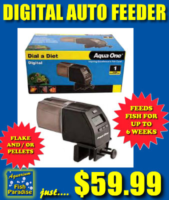 Dial-a-Diet Auto Fish Feeder