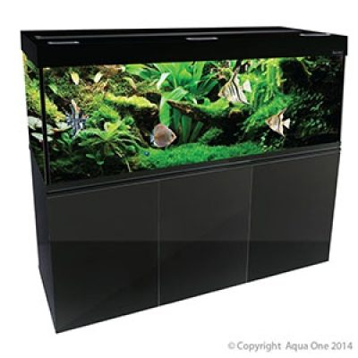 Brilliance 150 Aquarium