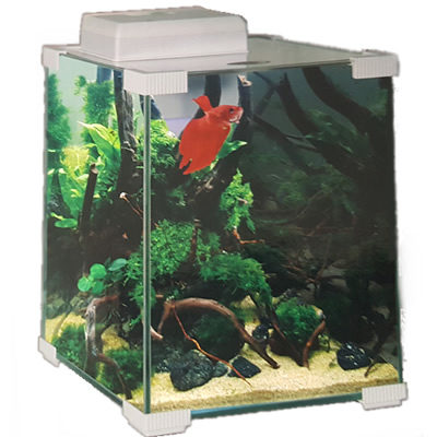 Aquamanta BT8 Betta Tank