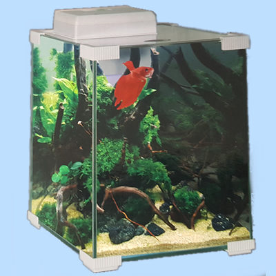 Aquariums - Betta Tanks
