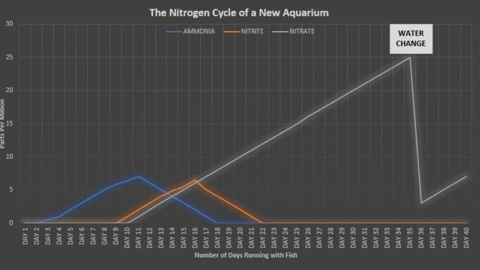 Nitrogen Cycle of a New Aquarium