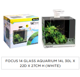 Focus 14 Aquarium