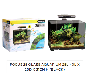 Aqua One Focus 25 Aquarium Black in Adelaide