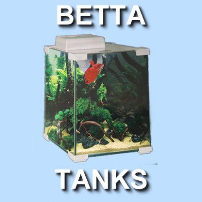 Betta Tanks